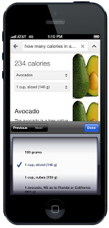 google nutrition search